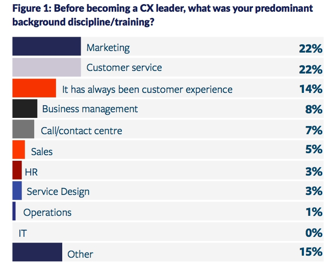 Il background dei customer experience leader